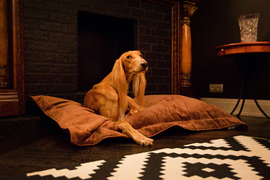 Бескаркасная лежанка для собаки серии Pad
