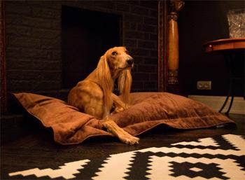 Пуфик-лежанка для собаки